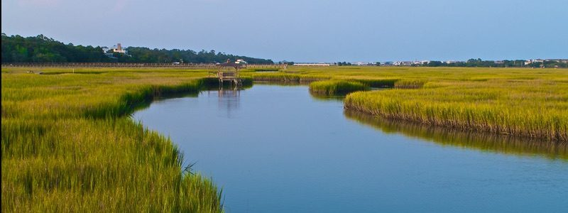 Pawleys Island Attractions