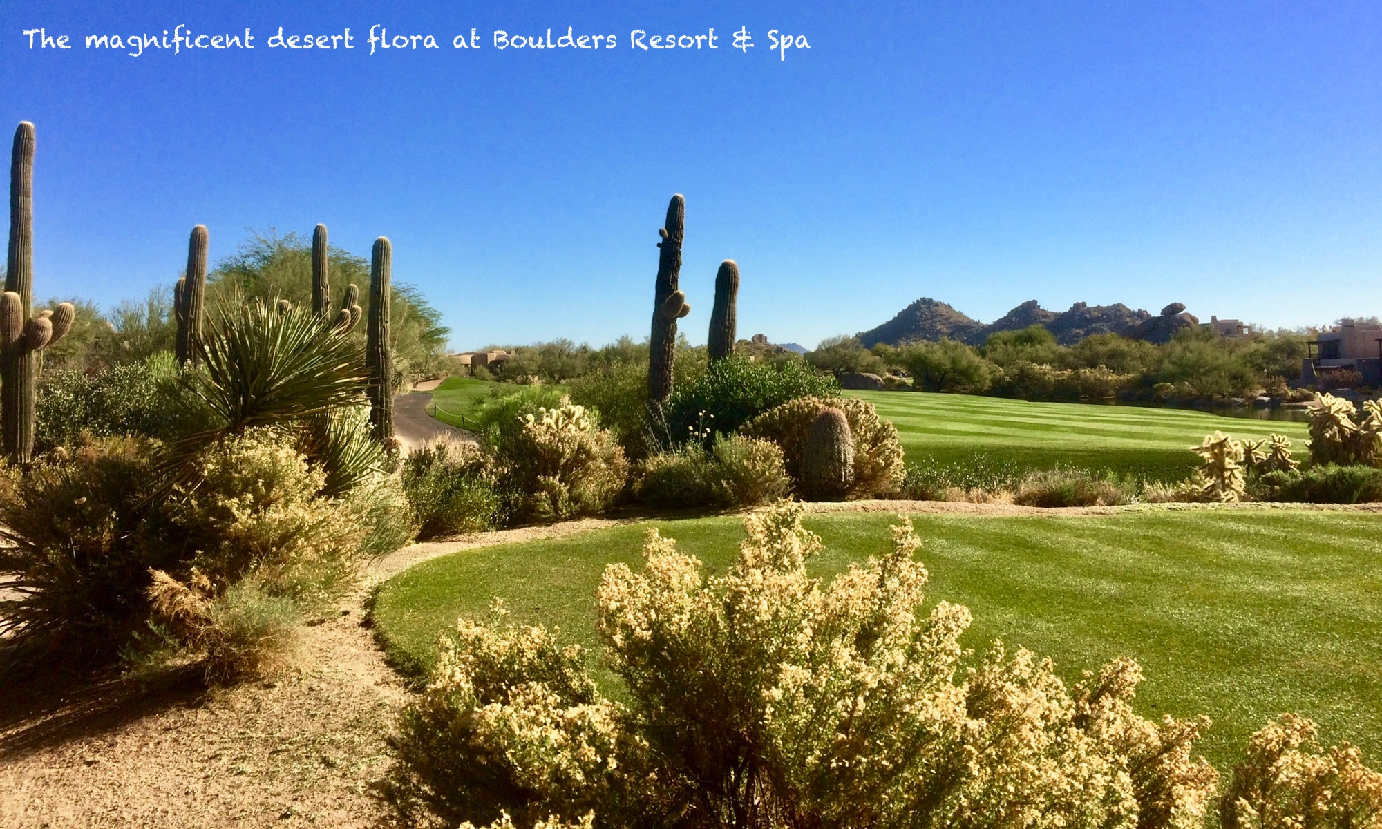 Arizona Travel Packages Scottsdale